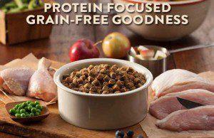 Dix meilleurs grains de chien gratuit Marques alimentaires