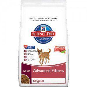 Meilleur nourriture pour chien pas cher qui est aussi nutritif