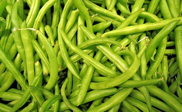 d5 vert-beans-1018624_640