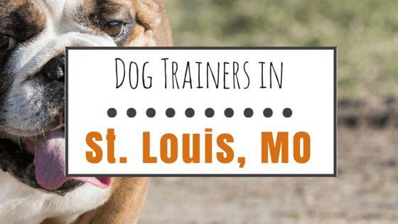10 formateurs de chiens populaires à st. Louis, mo