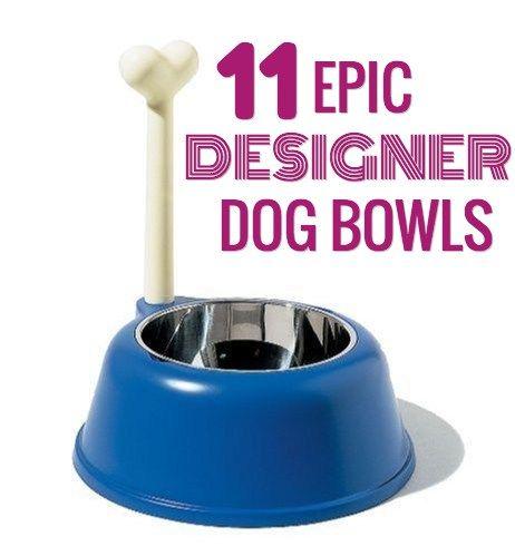 11 bols de chien Designer