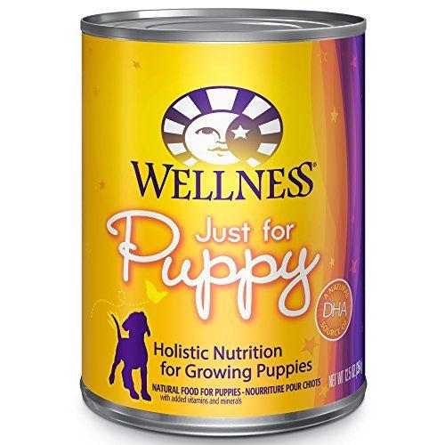Bien-être complet de santé naturels Wet Canned Dog Food