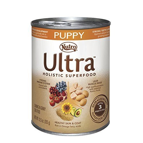 Nutro Ultra holistique Superfood Wet Dog Food