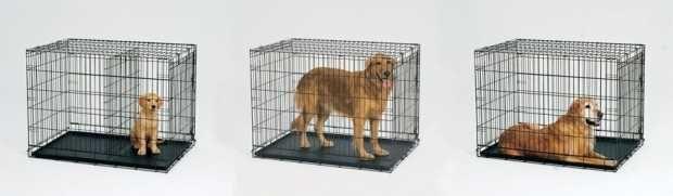 Meilleures Crates Voyage Dog