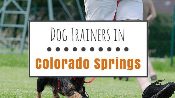 9 dresseurs de chiens Hautement recommandé dans colorado springs