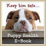 Découvrez pourquoi vous avez besoin de ce manuel de santé chiot