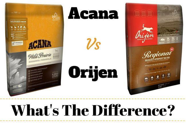 Acana vs Orijen écrit entre un sac de chaque marque de nourriture pour chien sur bg blanc