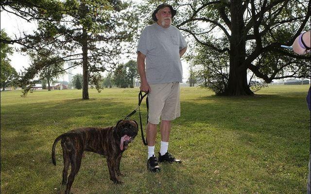 Arthrite Problème Sparks retraité`s Idea for A Dog Park in Toledo, Ohio