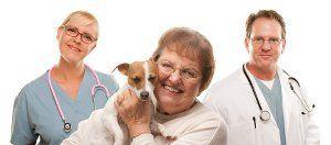 Être aide pour choisir un vétérinaire