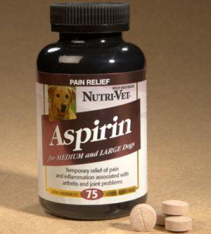 L`aspirine pour les chiens: je peux donner mon chien de l`aspirine? Est-ce sûr?