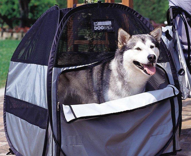 Sac à dos de chien Portable