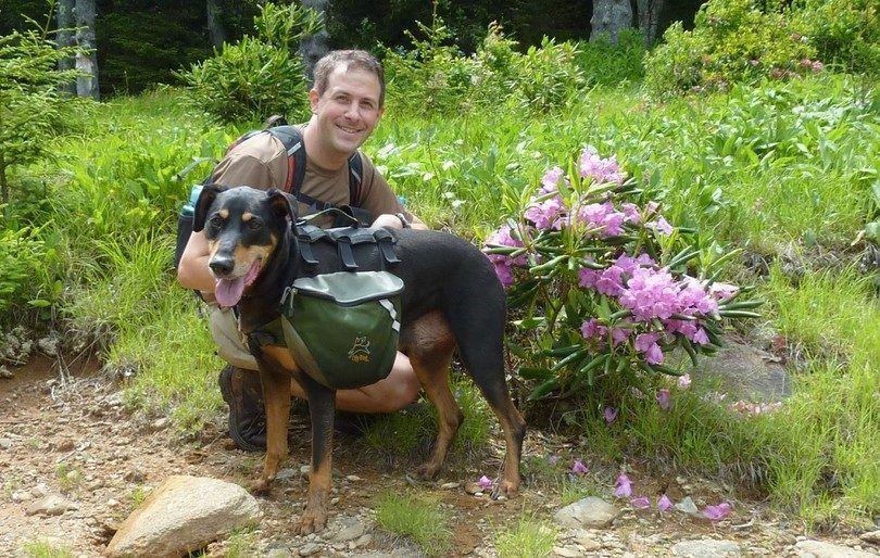 Backpacking avec chiens: essentials trucs et astuces