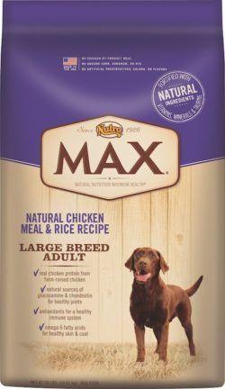 nourriture pour chien recommandé pour les gros chiens