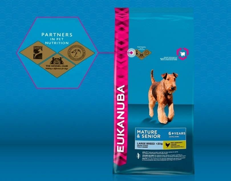 EUKANUBA Excel Adult Dog Food Avec Lamb