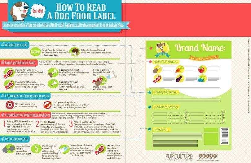 Nourriture pour chiens Infographic