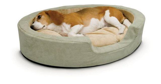 sont chien chauffée lits sûrs