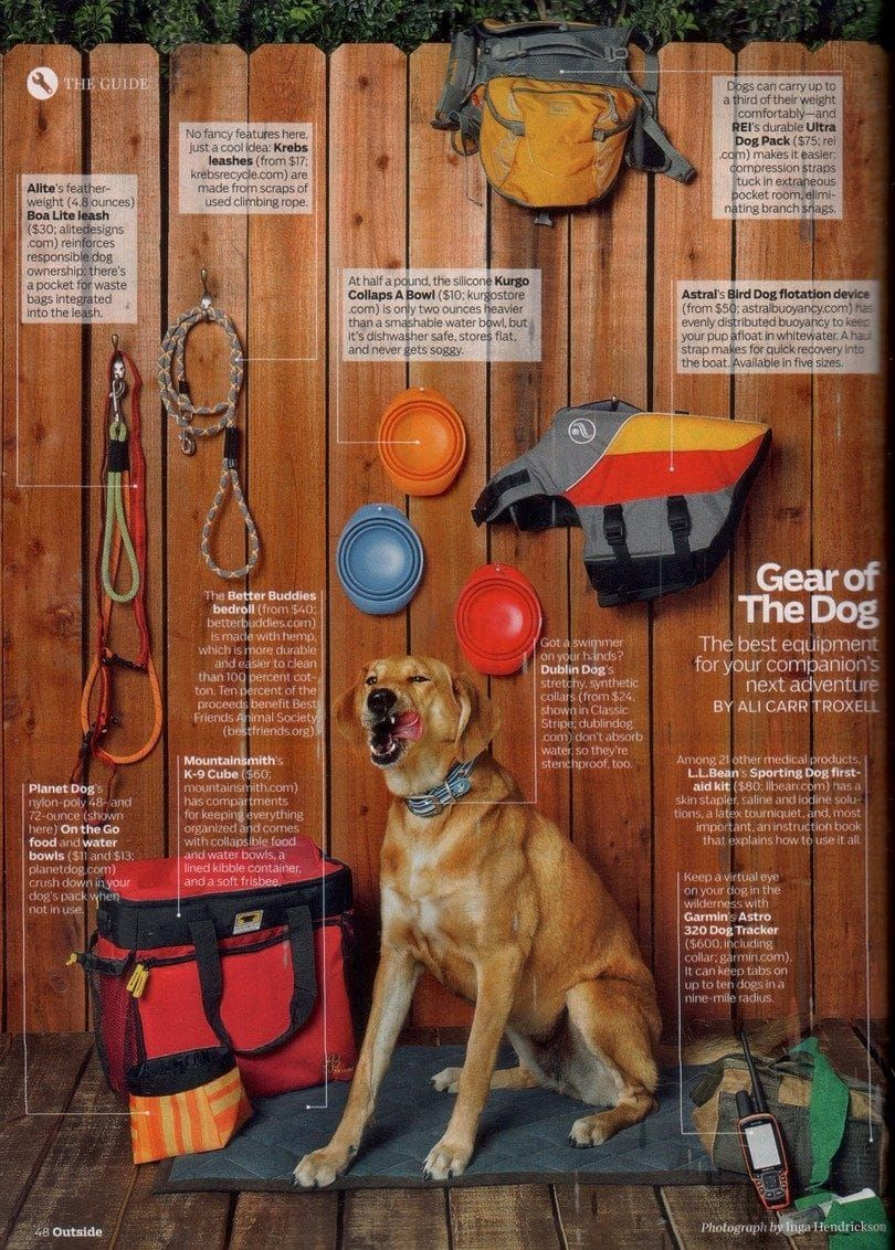 engrenage Dog pour la randonnée