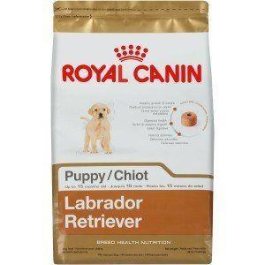 Sac de chiot Labrador Retriever Royal Canin sur fond blanc