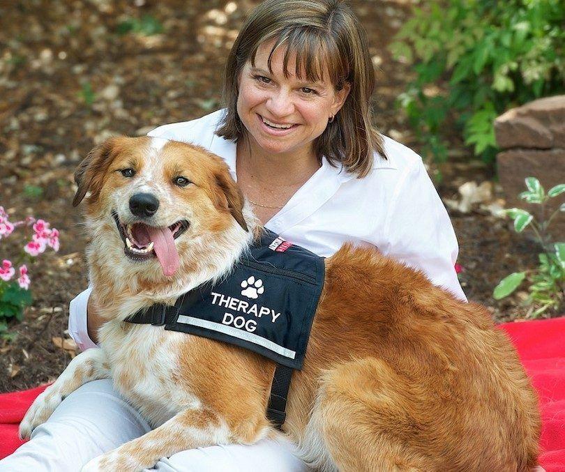 Therpay chien avec une femme