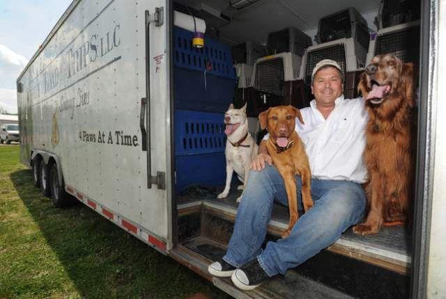 Brave homme parcourt 4.200 miles pour transporter les chiens sud secourus dans leurs nouveaux foyers du Nord