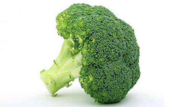 Le brocoli pour les chiens: est le brocoli bon pour les chiens?