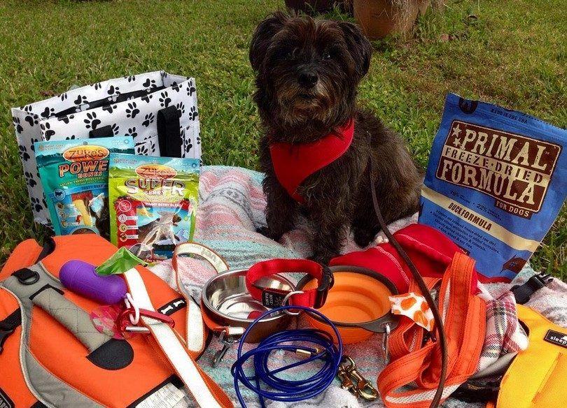 kit de camping Dog