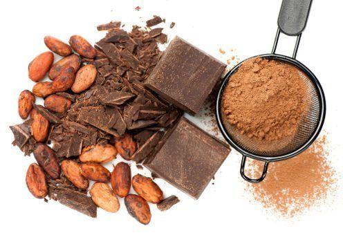 Chocolat sous diverses formes sur fond blanc