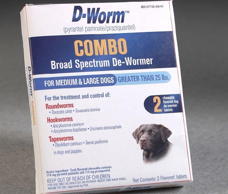 D-Worm