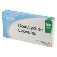 Puis-je donner mon chien doxycycline?