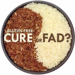 Puis-je donner mon chien nourriture avec du gluten?