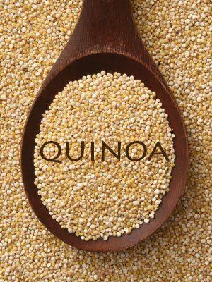 Puis-je donner mon chien quinoa?