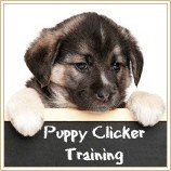 Comment & amp; pourquoi fonctionne clicker training