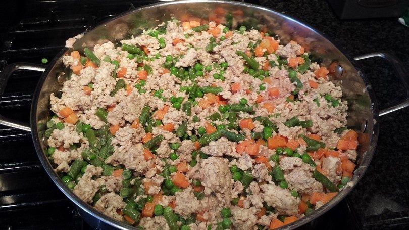 Nourriture pour chien maison