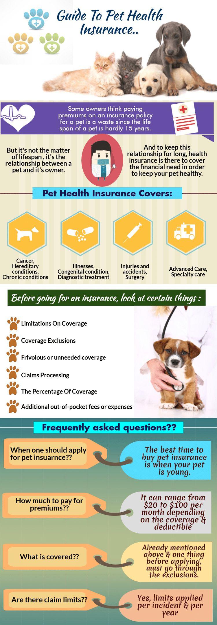 la thérapie au laser à froid pour les chiens: traitement de récupération sans douleur