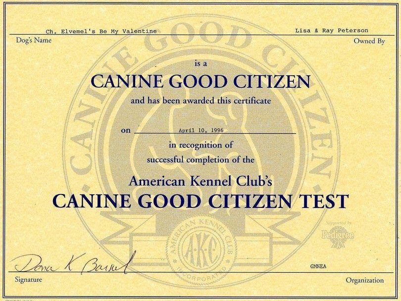 certificat de la CCG