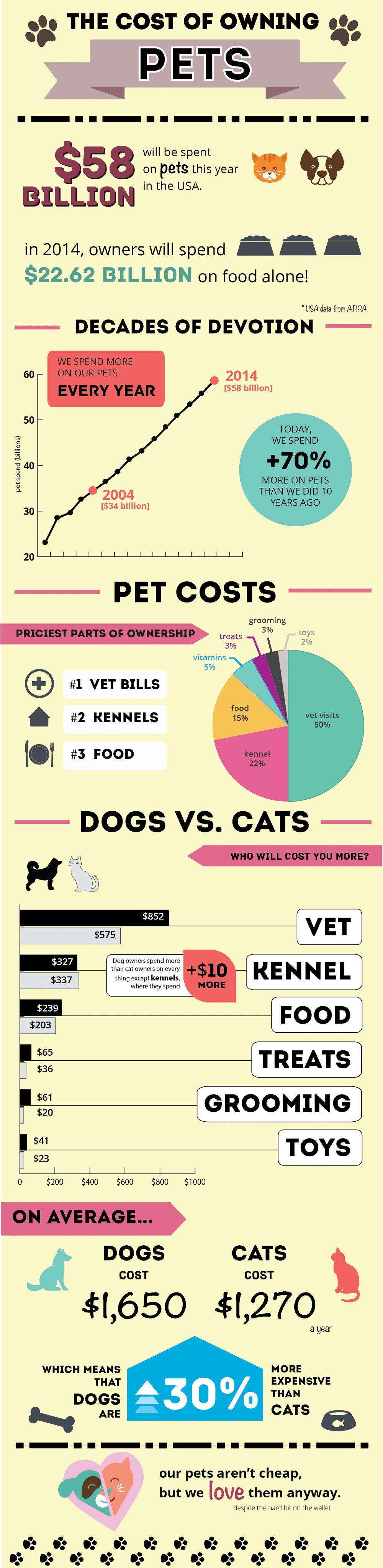 Coût de posséder un chien: faits et chiffres que chaque propriétaire de chien potentiel devrait savoir