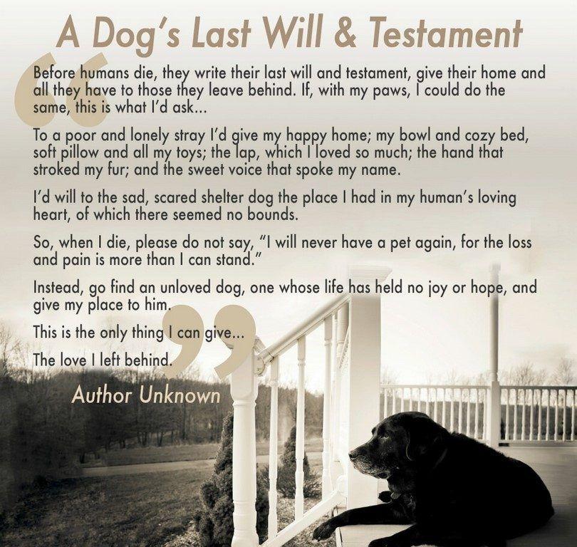 Un chien`s last will & testament