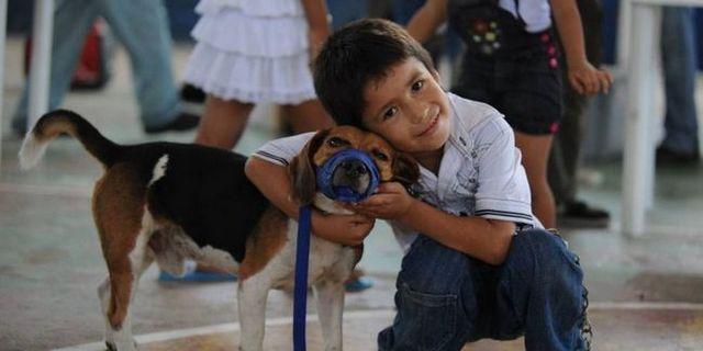 Detroiters ouvrent leurs portes pour former des chiens d`assistance