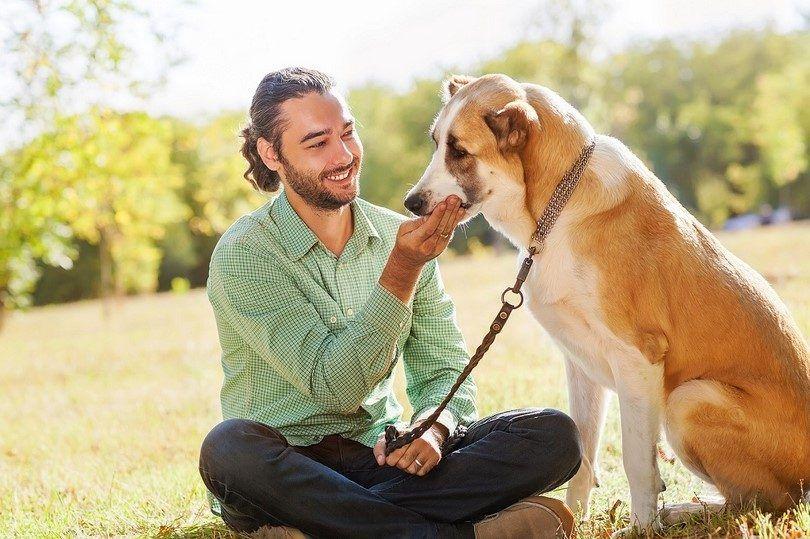 Traitement pour votre chien avec la diarrhée