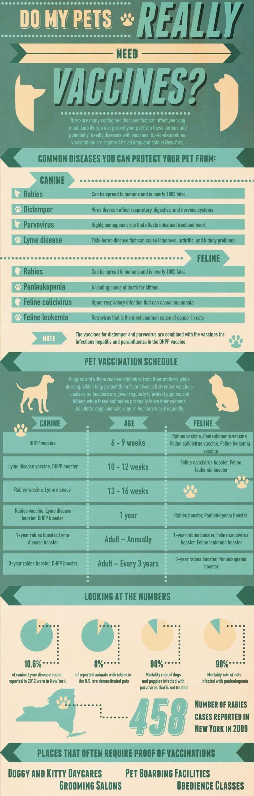 Est-ce que mes animaux ont vraiment besoin de vaccins