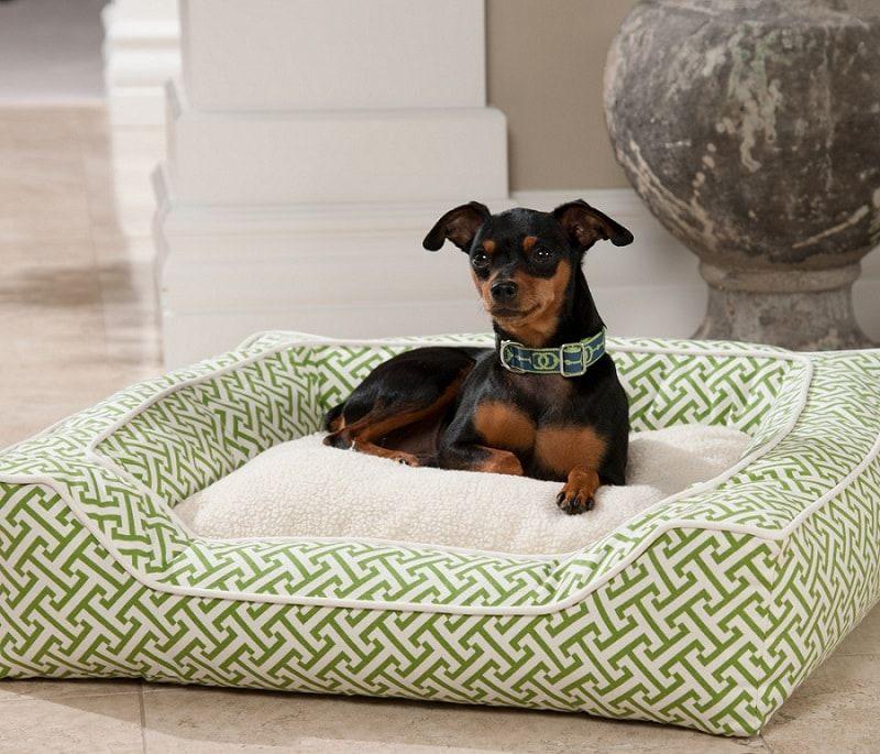 Sellette lits pour chiens