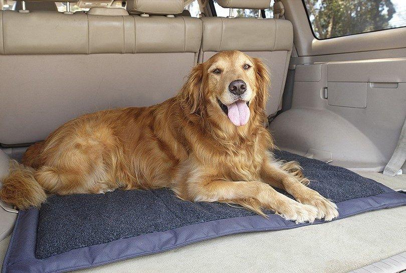 lits pour chiens de Voyage