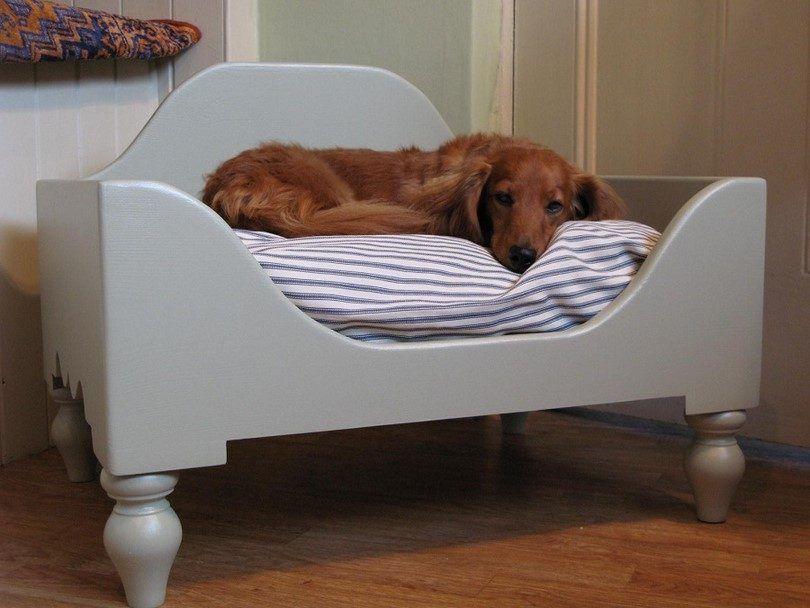 lits pour chiens surélevés