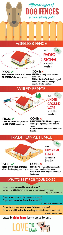 Bâtiment clôture chien