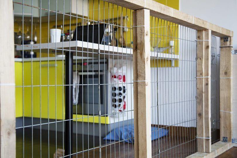 barrière de chien d`intérieur