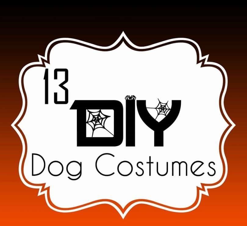 13 Costumes pour chiens de bricolage