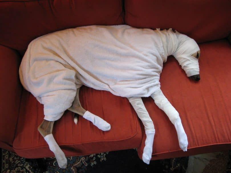 Faire un costume de momie