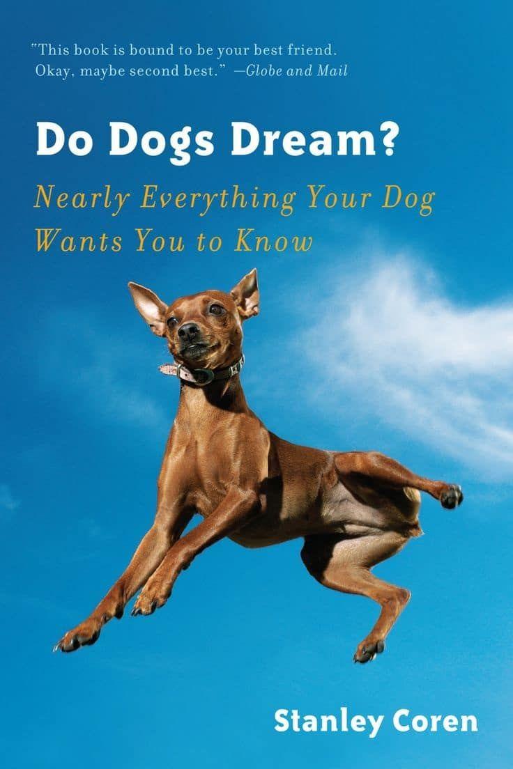 Ne chiens rêvent livre