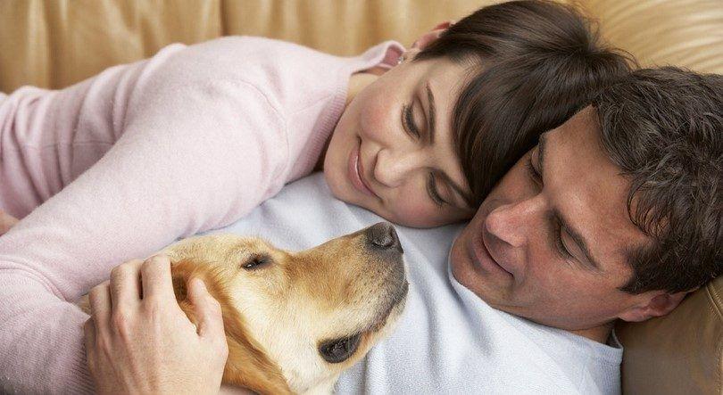 Couple et le chien aimant