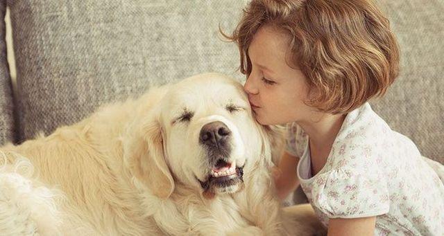 Est-ce que votre chien vous aime?